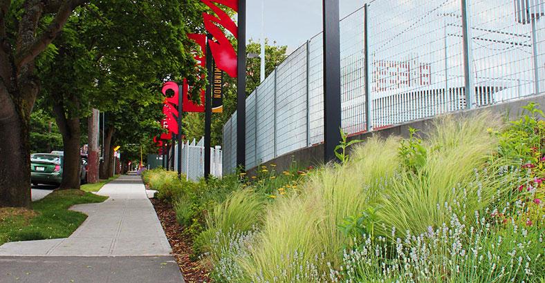 Seattle-University-Park-5