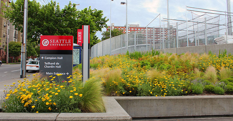 Seattle-University-Park-6