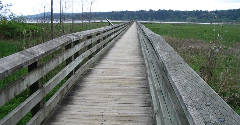 Mary-E.-Theler-Wetlands-1