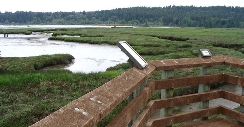 Mary-E.-Theler-Wetlands-4