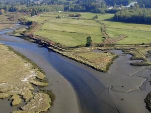 Pacific Northwest Salmon Center