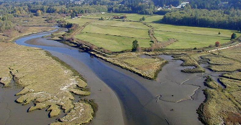 Pacific-Northwest-Salmon-Center-1