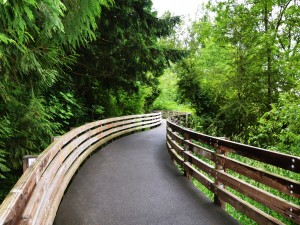 Nathan Chapman Memorial Trail