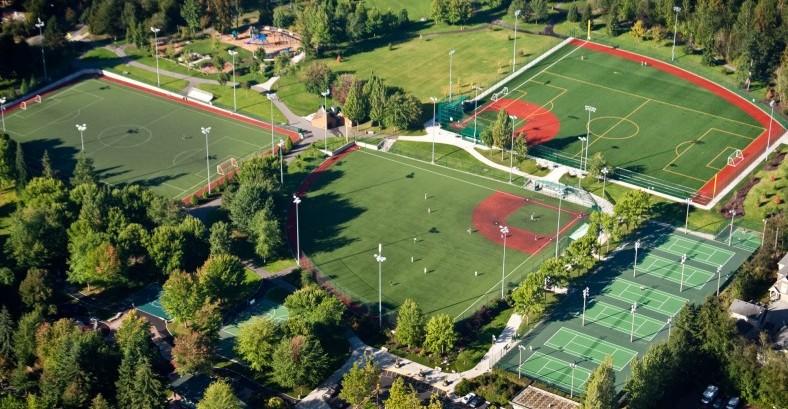 Grass Lawn Aerial 1