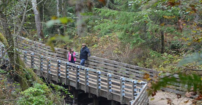 Fennel-Creek-Trail-1