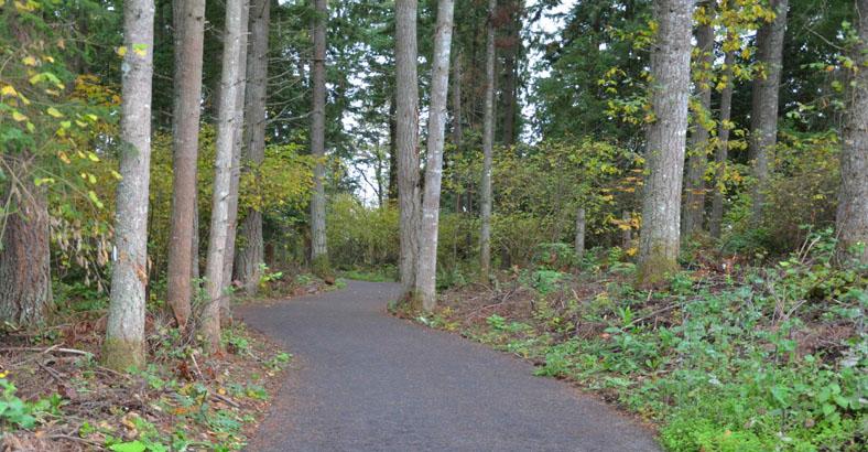 Fennel-Creek-Trail-3